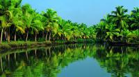 Kochi Kerala Nautica Kochi Shore Excursion: Alleppey Backwater Houseboat Tour 7491P49