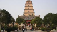 Xi'an Private Day Tour: City Wall, Great Mosque, Shaanxi History Museum and Big Wild Goose Pagoda