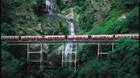 Scenic Kuranda Railway*