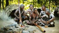 Tjapukai Aboriginal Cultural Park Day Trip from Cairns