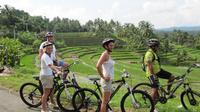 Full-Day Bali Downhill Bike Tour