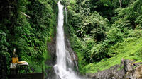 Private Tour: Natural Bali and Temples Tour
