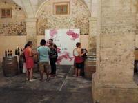 Mallorca Winery and Wine Tasting Tour from Palma de Mallorca