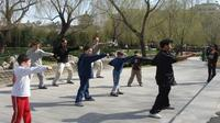 Beijing Family Adventure Tour: Kungfu Class at Temple of Heaven and Great Wall and Flying Kite