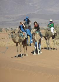 2-Day Zagora Tour from Marrakech Including the Atlas Mountains, Camel Trek and Desert Camp