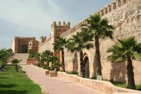 Casablanca Shore Excursion: Private Day Trip to Casablanca and Rabat*