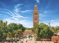 Casablanca Shore Excursion: Private Marrakech Tour*