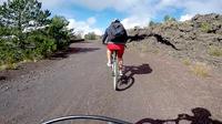 Mountain Bike Tour on Mount Etna