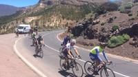 Teide West Cycling Tour in Tenerife