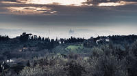 Grand Panoramic Private Tour of Florence by minivan