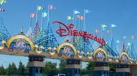 Private transfer from Charles de Gaulle or Orly Airport to Disneyland