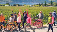 Chelan Electric Bicycle Winery Tour