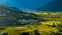 3-Nights Highlight Tour of Bhutan from Paro
