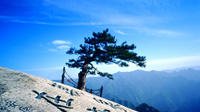Private Tour: Xi'an Huashan Mountain Exploration Day Tour