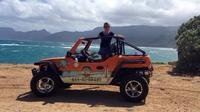 Dune Buggy Rental on Oahu