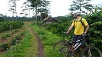 Crazy 8 Mountain Bike Tour from Dalat