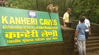 Mumbai Private Tour: Half-Day or Full-Day with Kanheri Caves Tour