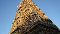 Private Full-Day Tour of Chennai with Kapaleeshwar Temple and San Thome Church