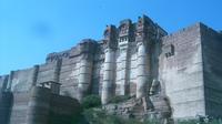 Private Tour: Bishnoi Villages and Mehrangarh Fort in Jodhpur