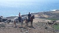 Small-Group Horseback Ride and Island Tour in Aruba