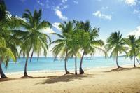 Private Catamaran Cruise in Punta Cana