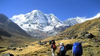 13-Night Annapurna Base Camp Tour from Kathmandu