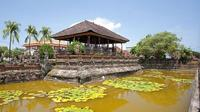 Full-Day Fascinating East Bali Tour