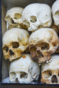 Half-Day Tuol Sleng Museum and Cheung Ek Killing Fields