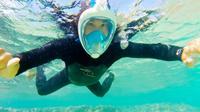 Snorkeling Mask Rental