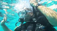 PADI Open Water Referral Dive Course in Cabo San Lucas