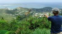 St Maarten Nature Walk and Snorkel Tour