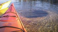 Kayak Day Paddle on Yellowstone Lake