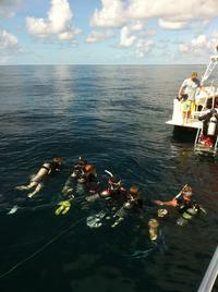 Introductory Scuba Diving Adventure