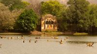 Private 2-Night Ranthambore National Park Tour from Jaipur