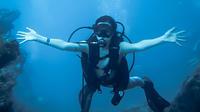 Scuba Dive Tour in Marietas Island from Sayulita