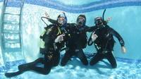 Diving Course in Playa de las Americas