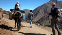 Imlil and Atlas Mountains Day Trip from Marrakech