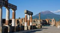 Private Pompeii and Herculaneum Day Tour