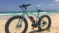 Fat e-bike tours*