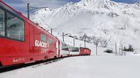 One-Day Glacier Express Tour with Private Guide