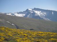 4WD Sierra Nevada Safari Tour in Granada