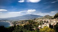 Private Tour: Mt Etna and Taormina from Catania