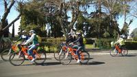 Papal Jubilee Bike Tour of Rome