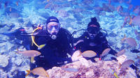 PADI Scuba Diving Course in Lanzarote