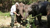 Full-Day Mahout's Life Experience