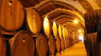 Western Sicily Half-Day or Full-Day Wine Tour
