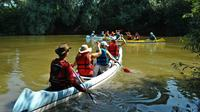 Canoeing Day Trip from Targu Mures