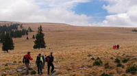 Full-Day Hiking Tour from Targu Mures