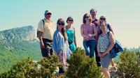 Full-Day Small-Group Languedoc Wine Tour with Lunch from Montpellier