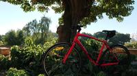 1-day Bicycle Rental in Palma